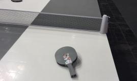 Table tennis table plastic sandwich panels Paneltim