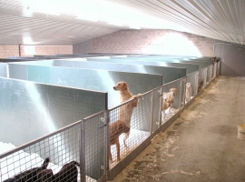 Paneltim plastic sandwich panels and venti panels in dog shelters