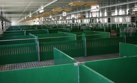 Pig farm with Paneltim plastic sandwich panels